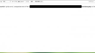 functions.phpファイルのエラー発生時の画面