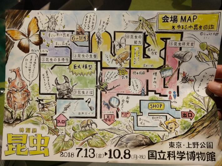 上野の国立科学博物館の昆虫展のマップ